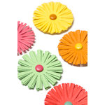 American Crafts - Pebbles - Hip Hip Hooray Collection - 3 Dimensional Flowers