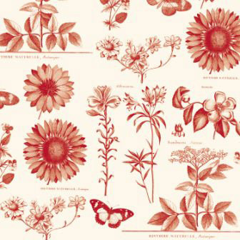 Anna Griffin - Flora Collection - 12 x 12 Paper - Flora Botanical Red