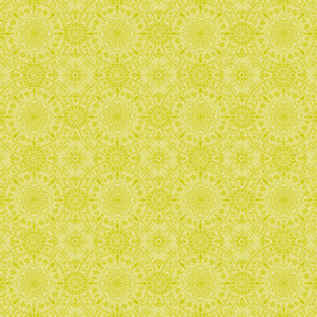 Anna Griffin - Isabelle Collection - 12 x 12 Paper - Lime Tonal, CLEARANCE