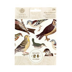 Anna Griffin - Cardstock Stickers - Avian