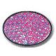 Art Institute Glitter - Art Glitter - Amethyst - One-Half Ounce - No. 98, CLEARANCE
