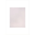 Altenew - 8.5 x 11 Cardstock - Spicy Yogurt - 10 Pack