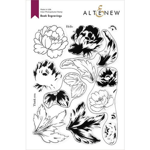 Altenew - Clear Photopolymer Stamps - Book Engravings