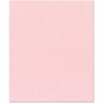 Bazzill Basics - 8.5 x 11 Cardstock - Canvas Texture - Quartz