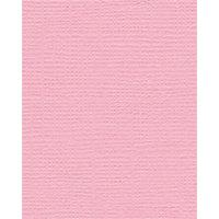 Bazzill Basics - Bulk Cardstock Pack - 25 Sheets - 8.5x11 - Fussy