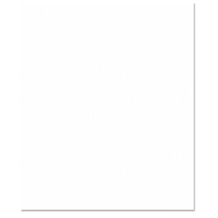 Bazzill Basics - 8.5 x 11 Cardstock - Grasscloth Texture - Avalanche