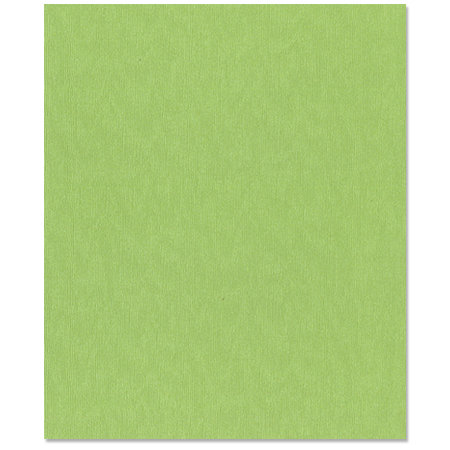 Bazzill Basics - 8.5 x 11 Cardstock - Canvas Bling Texture - Envy, CLEARANCE