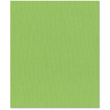 Bazzill Basics - 8.5 x 11 Cardstock - Canvas Bling Texture - Bank Roll