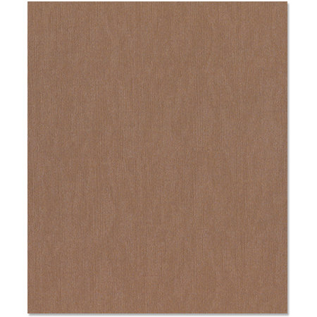 Bazzill Basics - 8.5 x 11 Cardstock - Canvas Bling Texture - Flat Broke