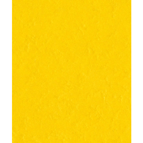 Bazzill Basics - Prismatics - 8.5 x 11 Cardstock - Dimple Texture - Candle Glow Dark