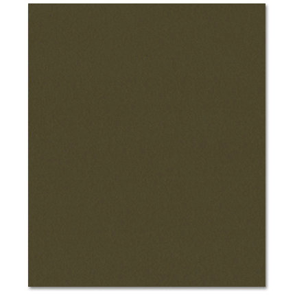 Bazzill Basics - Prismatics - 8.5 x 11 Cardstock - Dimpled Texture - Birchtone Dark