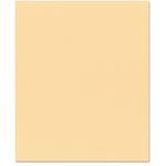 Bazzill Basics - 8.5 x 11 Cardstock - Canvas Texture - Canvas