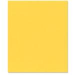 Bazzill Basics - 8.5 x 11 Cardstock - Grasscloth Texture - African Daisy