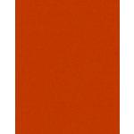 Bazzill Basics - 8.5 x 11 Cardstock - Grasscloth Texture - Pumpkin Patch