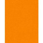 Bazzill Basics - 8.5 x 11 Cardstock - Grasscloth Texture - Carrot Cake