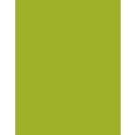 Bazzill Basics - 8.5 x 11 Cardstock - Grasscloth Texture - Sour Apple