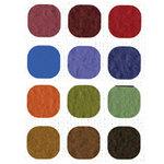 Bazzill Basics Inspirations Cardstock Pack - 12 x 12 - Dark Orange Peel Texture