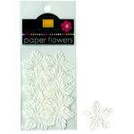 Bazzill Basics - Paper Flowers - Mini Poinsettias - White, CLEARANCE