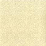 Bazzill Basics - 12 x 12 Embossed Cardstock - Trellis - Sugar Cookie