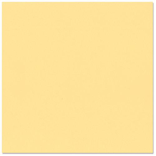 Bazzill - 8.5 x 11 Cardstock - Grasscloth Texture - Tapioca