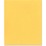 Bazzill Basics - 8.5 x 11 Cardstock - Dotted Swiss Texture - Cornmeal