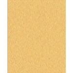 Bazzill Basics - Bulk Cardstock Pack - 25 Sheets - 8.5x11 - Sunflower, CLEARANCE