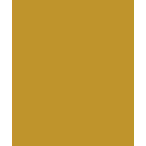 Bazzill Basics - Card Shoppe - 8.5 x 11 Cardstock - Premium Smooth Texture - Gold Coins