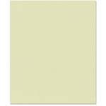 Bazzill Basics - 8.5 x 11 Cardstock - Canvas Texture - Aloe Vera