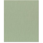 Bazzill Basics - 8.5 x 11 Cardstock - Canvas Texture - Moss