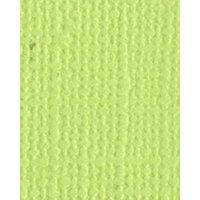 Bazzill Basics - Bulk Cardstock Pack - 25 Sheets - 8.5x11 - Limeade
