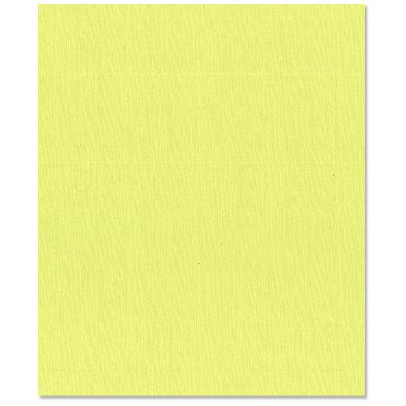 Bazzill Basics - 8.5 x 11 Cardstock - Canvas Texture - Limeade
