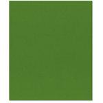 Bazzill Basics - 8.5 x 11 Cardstock - Smooth Texture - Kiwi Crush