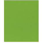 Bazzill Basics - 8.5 x 11 Cardstock - Smooth Texture - Lime Crush