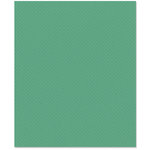 Bazzill Basics - 8.5 x 11 Cardstock - Dotted Swiss Texture - Tahitian Princess