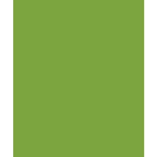 Bazzill Basics - Card Shoppe - 8.5 x 11 Cardstock - Premium Smooth Texture - Easter Grass