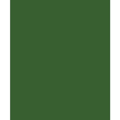 Bazzill Basics - Card Shoppe - 8.5 x 11 Cardstock - Premium Smooth Texture - Gumdrop