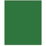 Bazzill - 8.5 x 11 Cardstock - Smooth Texture - Shamrock