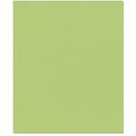 Bazzill Basics - 8.5 x 11 Cardstock - Classic Texture - Peapod