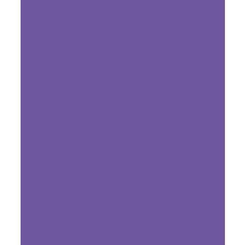 Bazzill Basics - Card Shoppe - 8.5 x 11 Cardstock - Premium Smooth Texture - Gummy Bear