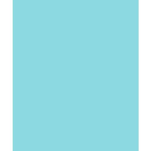 Bazzill Basics - Card Shoppe - 8.5 x 11 Cardstock - Premium Smooth Texture - Robin's Egg