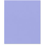 Bazzill Basics - 8.5 x 11 Cardstock - Criss Cross Texture - Blue Bell