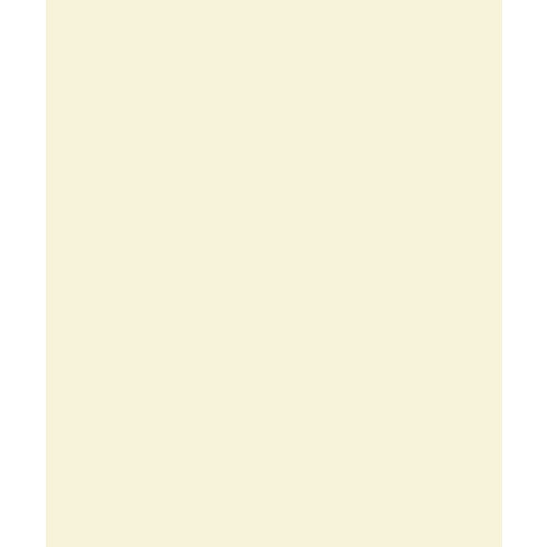 Bazzill Basics - Card Shoppe - 8.5 x 11 Cardstock - Premium Smooth Texture - Butter Mints
