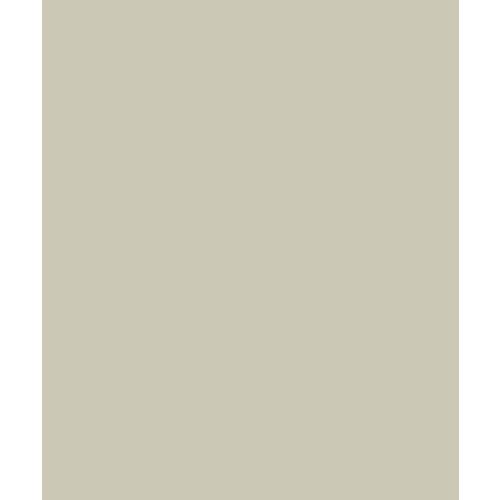 Bazzill Basics - Card Shoppe - 8.5 x 11 Cardstock - Premium Smooth Texture - Taffy