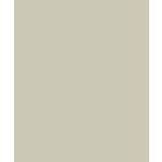 Bazzill Basics - Card Shoppe - 8.5 x 11 Cardstock - Premium Smooth Texture - Taffy