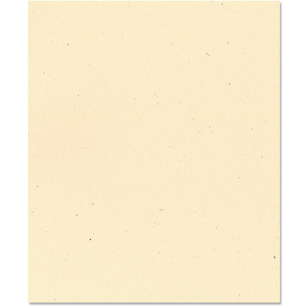 Bazzill Basics - 8.5 x 11 Cardstock - Classic Texture - Sawdust