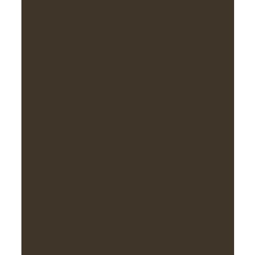 Bazzill Basics - Card Shoppe - 8.5 x 11 Cardstock - Premium Smooth Texture - Candy Bar