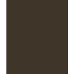 Bazzill Basics - Card Shoppe - 8.5 x 11 Cardstock - Premium Smooth Texture - Candy Bar