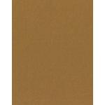 Bazzill Basics - 8.5 x 11 Cardstock - Canvas Texture - Walnut