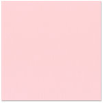 Bazzill - 12 x 12 Cardstock - Burlap Texture - Emma