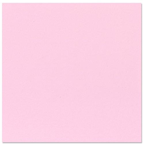 Bazzill Basics - 12 x 12 Cardstock - Grasscloth Texture - Pinkini